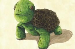 """Turtle"" for Owen"